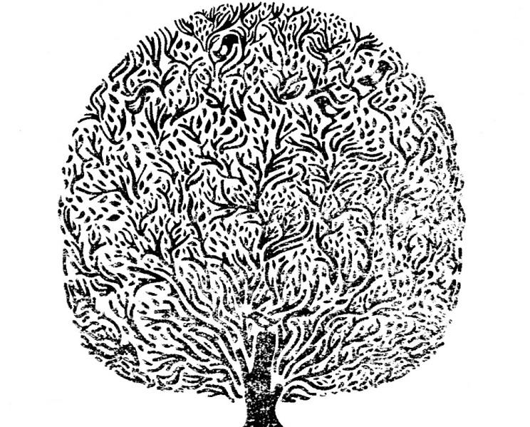Phil Hart tree logo design